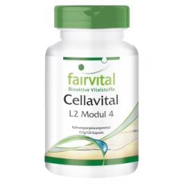 Cellavital - 120 Cápsulas - 92712